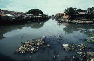 Consecuencias de no cuidar el agua